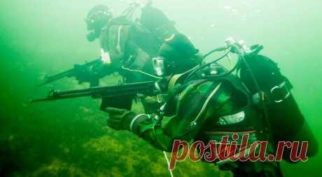 Как советские водолазы встретили подводную цивилизацию. | Первый Интересный Канал | Яндекс Дзен