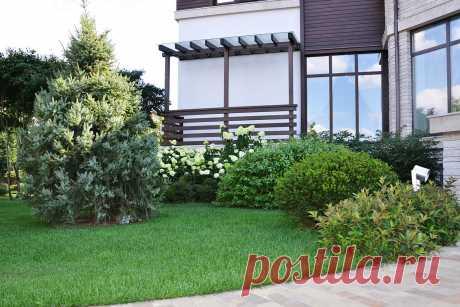 Современный сад в КП Бенелюкс Вилла 1 - ARCADIA GARDEN Landscape studio