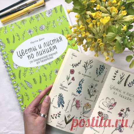 Наконец можем показать вам пухленький сборник «Цветы и листья по линиям». Да, рисовать можно прямо в книге! В ней целых 200 уроков по рисованию растений и цветов. Каждый представленный рисунок можно использовать и как центральный объект картины, и как элемент декора (для обрамления записей, открыток или даже как основу-контур для выжигания). Мы попробовали перенести рисунки в скетчбук и добавить немного акварели. Повторяйте, учитесь или просто медитируйте страница за страницей. ⠀Заходите по…