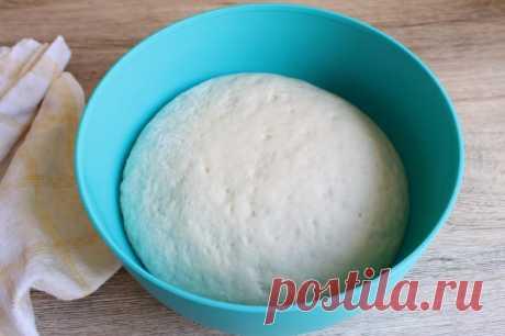 Testo sobre el kéfir para el pastel - 6 recetas de la preparación
