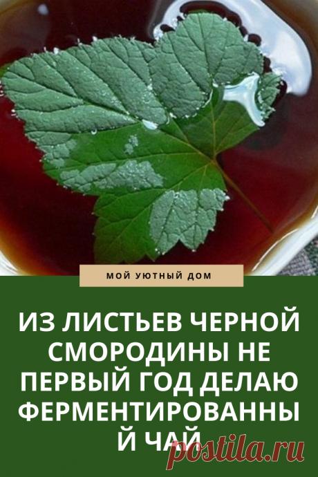 Рецепт вкусного и полезного чая из листьев смородины