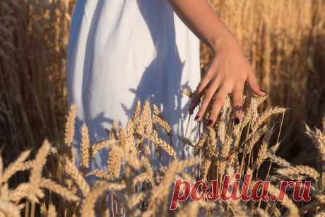 Народные приметы на 26 июля — Гаврила Летний Крестьяне занимались сельскохозяйственными работами с молитвой, чтобы дожди не помешали им в этом. Особенно боялись грозовых дождей, опасались молнии, которая могла попасть, например, в стог сена и сжечь его.