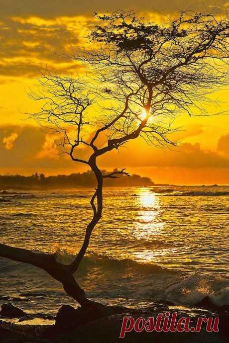 Stunning Sunset ~ | Is found Dreamy Nature on the website dreamynature2014.blogspot.com.