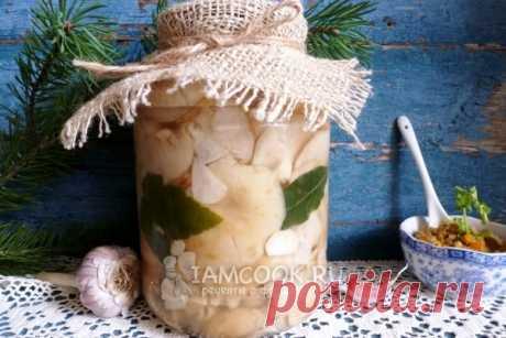 Грузди соленые холодным способом — рецепт с фото пошагово. Как солить грузди холодным способом в банках?