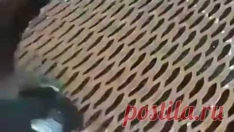 Мангал - гриль из авто диска