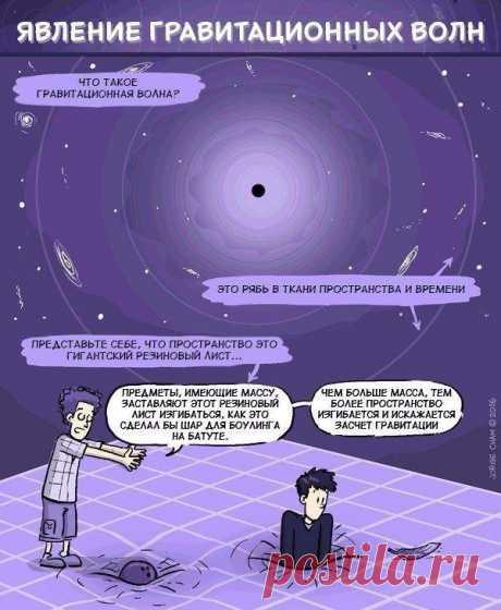 Если бы науку преподавали в виде комиксов:
