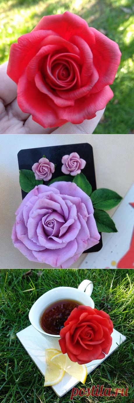 Светлана Аукина (@svetlanaaukina) • Фото и видео в Instagram