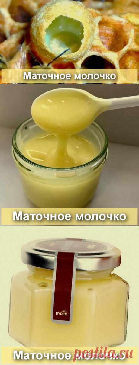 Чем полезно пчелиное маточное молочко - БиоКорова