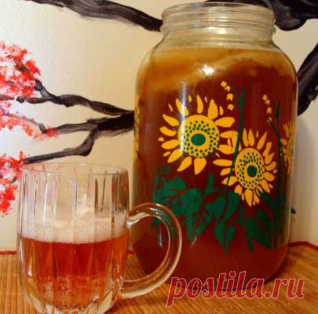 «Японская матка»! Вот почему тысячи японок пьют настой чайного гриба в обязательном порядке. - Женская логика