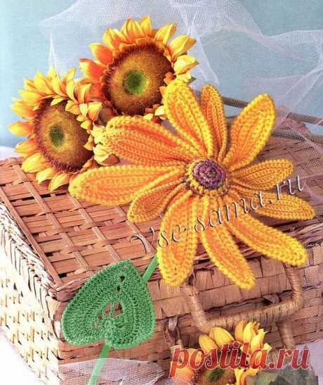 Solar flower. Sunflower hook. Detailed description.