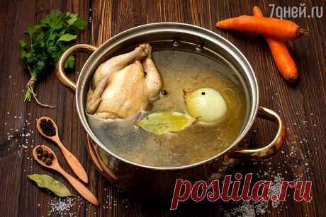 El caldo ideal de gallina: la receta del jefe de cocina Gordon Ramzi - 7Дней.ру