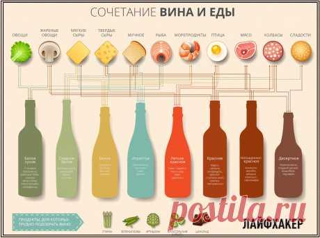 Как подобрать вино к еде.