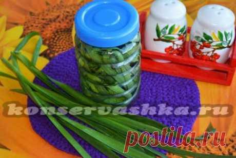 Соленая черемша - пошаговый рецепт с фото