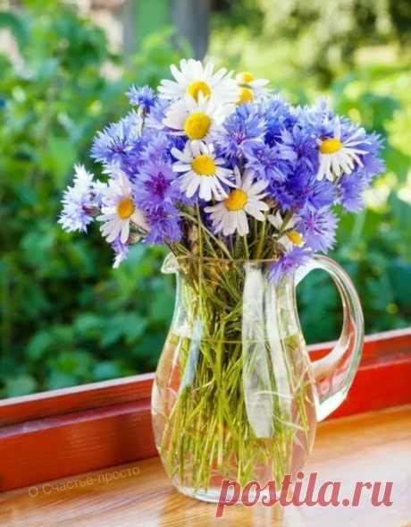 Счастье, как полезный витамин, без него не обойтись....