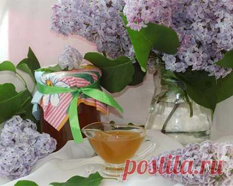 Варенье из сирени - средство против простуды и жара