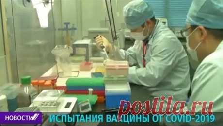 В Китае идут испытания вакцины от COVID-19 на людях