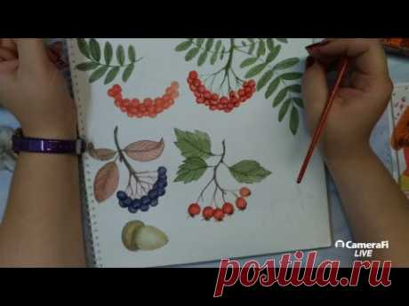 Рисуем осенние высечки