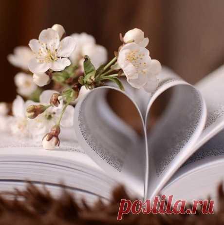 Я давно не пишу тебе писем /не тот формат/, Не листаю страницы книги с названием «Было» И при встрече уставшее сердце не бьет в набат... А тихонечко шепчет «его ты когда-то любила». Я давно разучилась с тобою дышать в унисон, Умножая все вдохи и выдохи на бесконечность... И без крыльев лететь в Никуда, позабыв обо всём... Я, наверное, стала старше... /на целую вечность/. Я давно не пишу тебе писем... и в городе N Почтальон не бросает теперь их в почтовый ящик... Время всё ...