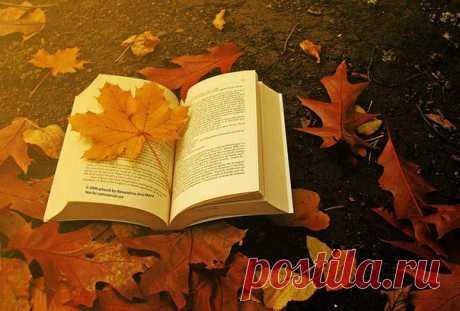только осенью хочется пить теплый чай и влюбляться в новую книгу.только осенью можно скучать по не сложившемуся не сказанному,не служившемуся.