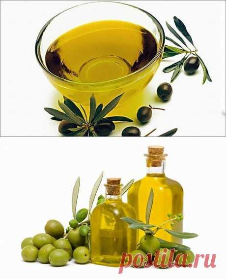 Оливковое масло – жидкое золото для женской красоты.