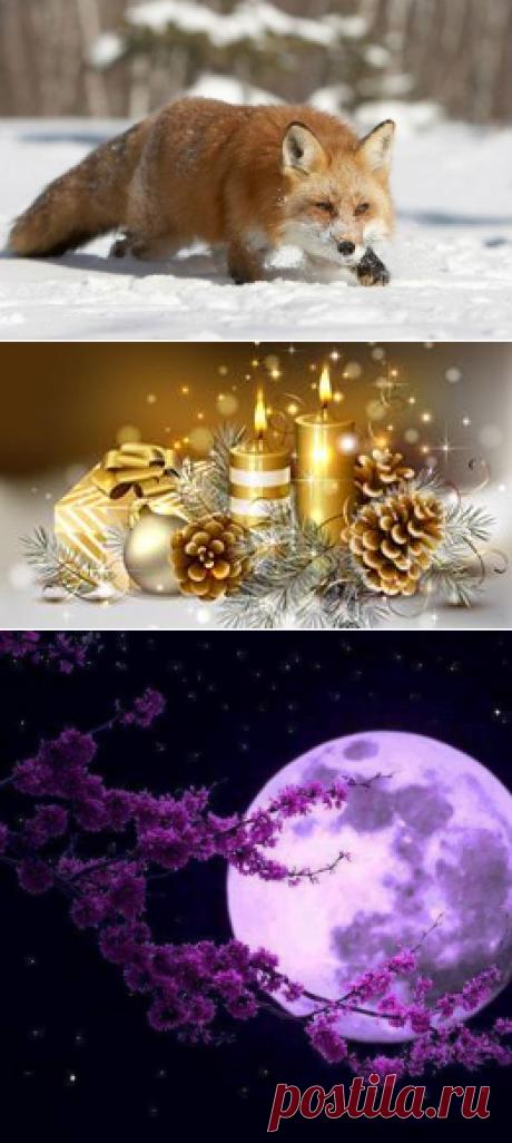 ЛУННЫЙ КАЛЕНДАРЬ. Our Moon life style.
