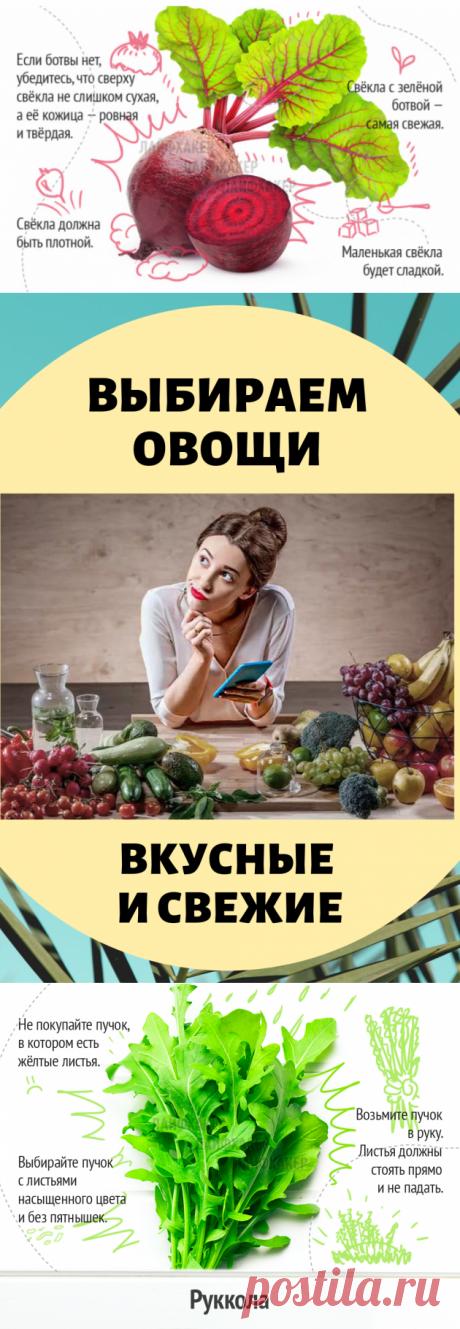 Выбираем вкусные и свежие овощи... Главное – знать!