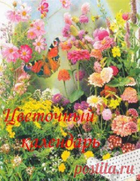 Вы уже распланировали для себя ближайшие мероприятия по посеву семян цветов на рассаду? Например, какие семена нужно посеять на рассаду в феврале? Вам в помощь комплект «Цветочного календаря».