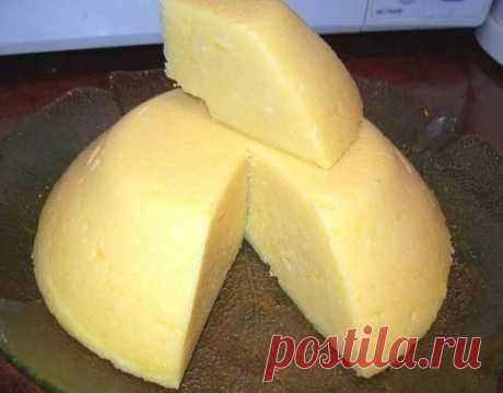 El queso de casa