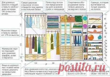 Правильное распределение места в гардеробе: