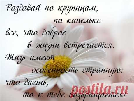 (38) Мой Мир@Mail.Ru