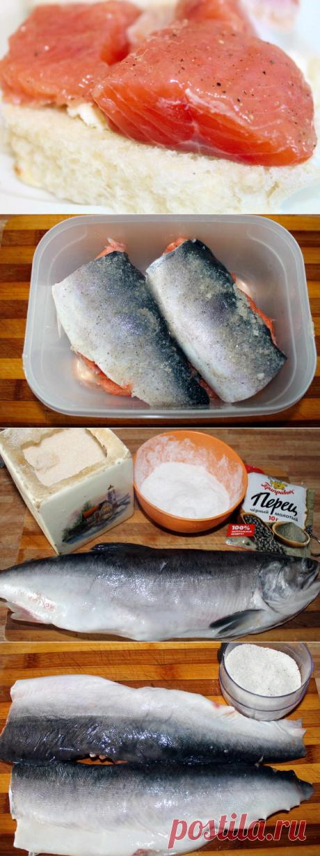 Соленая горбуша | Домашняя кухня | Яндекс Дзен