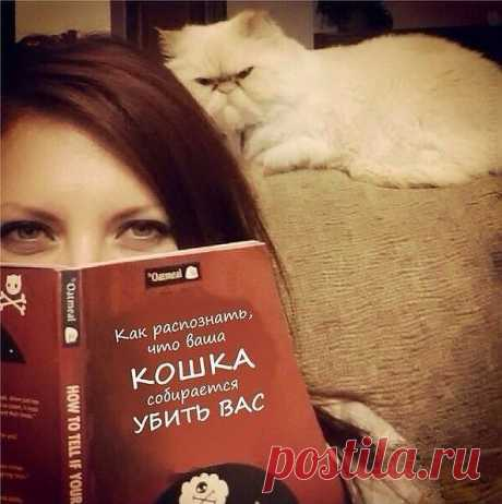 хорошая книга!