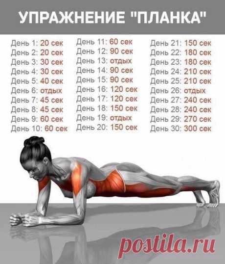 Тренировка в планке-подтянет тонус мышц и поможет скинуть лишний вес