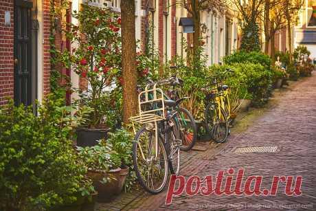 Секрет чистоты голландских улиц: vlade_mir — LiveJournal