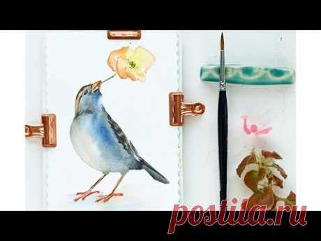 Акварельная открытка: рисуем в один слой быстро и эффектно