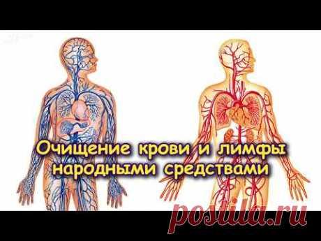 ОЧИЩЕНИЕ КРОВИ И ЛИМФЫ НАРОДНЫМИ СРЕДСТВАМИ - YouTube