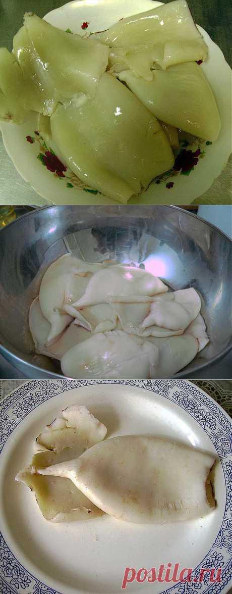 Как варить кальмаров - Кальмары.biz - рецепты из кальмаров, как выбирать кальмаров, как почистить кальмаров, как варить кальмаров, салаты из кальмаров, жареные кальмары, фаршированные кальмары.