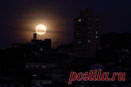 """Полнолуние """"Охотничья Луна"""" в ночь на 2 октября 2020 года: прямая онлайн-трансляция"""