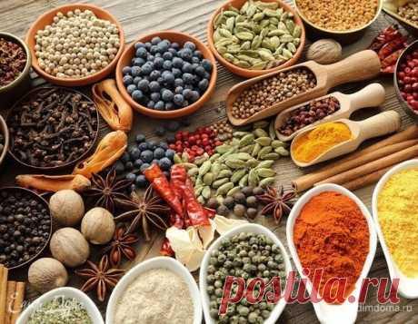 5 СПЕЦИЙ, КОТОРЫЕ АЮРВЕДА РЕКОМЕНДУЕТ ВСЕГДА ИМЕТЬ НА КУХНЕ  С древних времен Индия считалась страной специй. Каждый штат Индии — это особая экосистема со своими специями и целебными растениями.  Сами индийцы с удовольствием используют специи на своих кухнях в больших количествах. Первое, что привозили из Индии купцы, были, конечно, специи. Они также были основной статьей экспорта из Индии для колониальных властей. Путь приправ начинался в Индии, также, как Шелковый путь н...