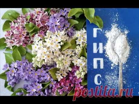 Холодный фарфор с ГИПСОМ - YouTube