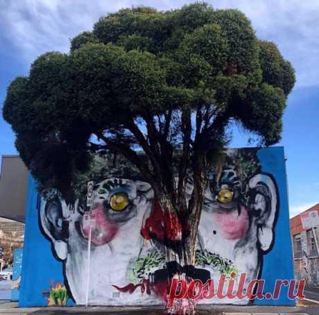 Яркий и выразительный стрит-арт Энтони Листера Австралийский художник Энтони Листер рисует фрески, которые стирают грань между стрит-артом и традиционным изобразительным искусством. Предметы на его