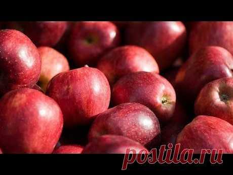 Пища богов: Молодильные яблоки.