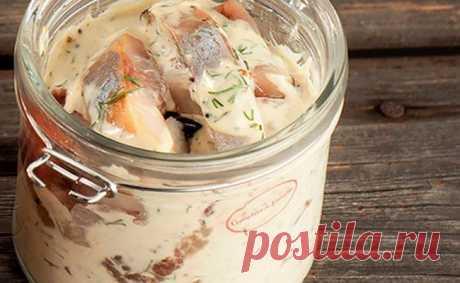 Селедка в горчичном соусе: 3 простых рецепта Изначально этот рецепт присутствовал только в финской кухне. Но, как известно, ни один рецепт долго на своей родине не задерживается.