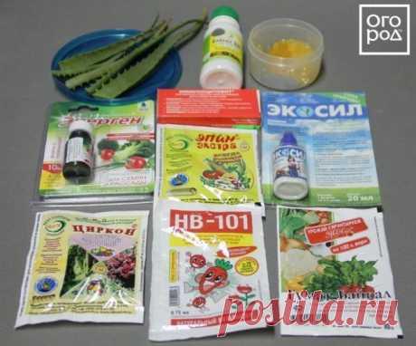 Тестируем разные стимуляторы роста для растений   Удобрения и стимуляторы (Огород.ru)