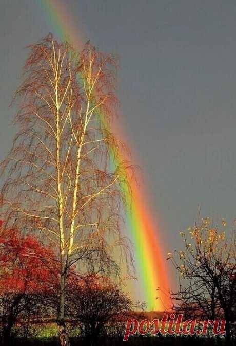 Прощальная радуга тёплого Октября...