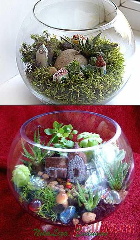Сад на окне - Ярмарка Мастеров - ручная работа, handmade (от Вероника Сеина) (Есть еще время соорудить такую прелесть)))