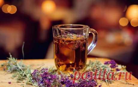 Чай с чабрецом, лечебные свойства, в чём польза и вред чая с