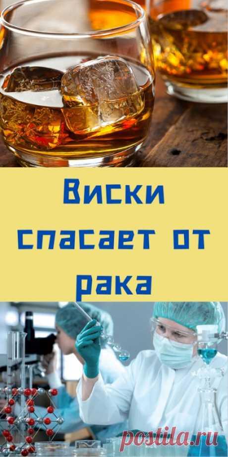 Виски спасает от рака - likemi.ru