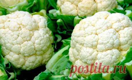 Вот что происходит с организмом, когда вы едите цветную капусту. И почему я раньше этого не знала?!