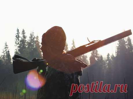 Приоритеты охоты изменились Современные охотники-любители Центральной России вбольшинстве своем отстранились от добычи пушнины. Разве что назайцев илис, ради спортивного интереса,